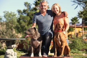 Cesar and I with our dogs