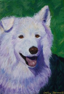 samoyed custom canine art
