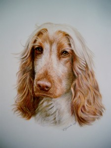 Color pencil /watecolor on Strathmore art paper-$575