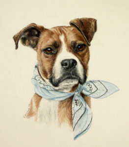 boxer dog custom art