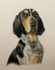 Hank-dog-portrait