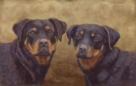 Rottweilers in commissioned pastel painting