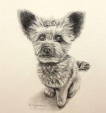 dog portrait commission